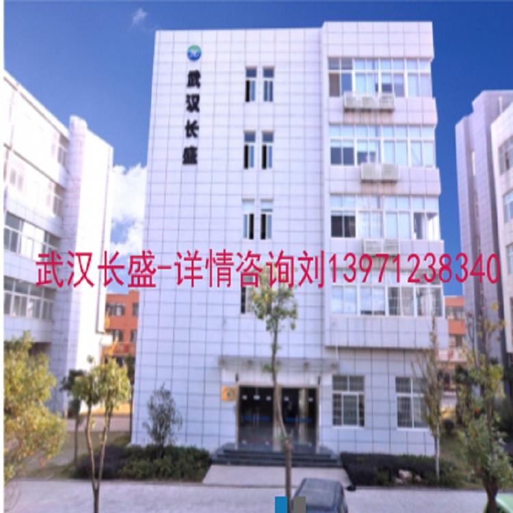 武汉长盛煤安科技有限公司