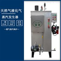 旭恩硫化罐加热30KG燃气蒸汽发生器
