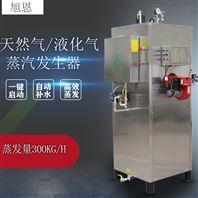 300KG天然气蒸汽发生器