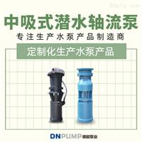 简易式轴流泵