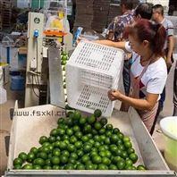 自動套果袋的檸檬包裝機 檸檬高速套袋機