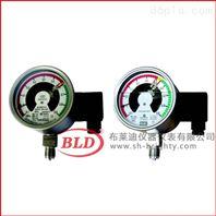 上海布莱迪/气体密度控制器/标准型径向