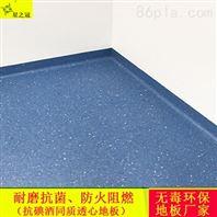 南宁星之冠PVC塑胶地板厂家