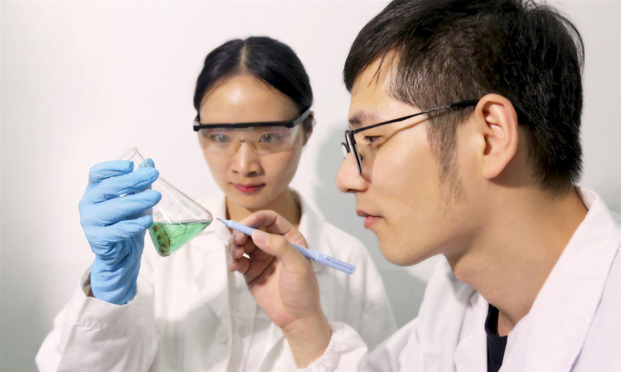 """發力循環經濟 新加坡研究將塑料垃圾制成""""新生油"""""""